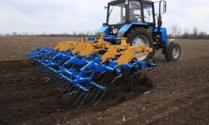 Навесной культиватор на трактор МТЗ 82: классификации, обзор