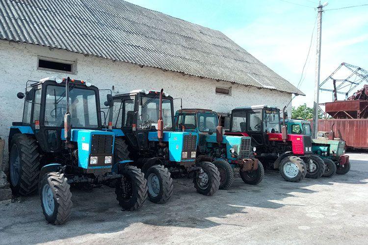 Парк тракторов МТЗ