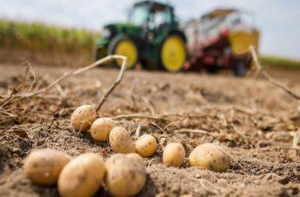Трактор для посадки картофеля